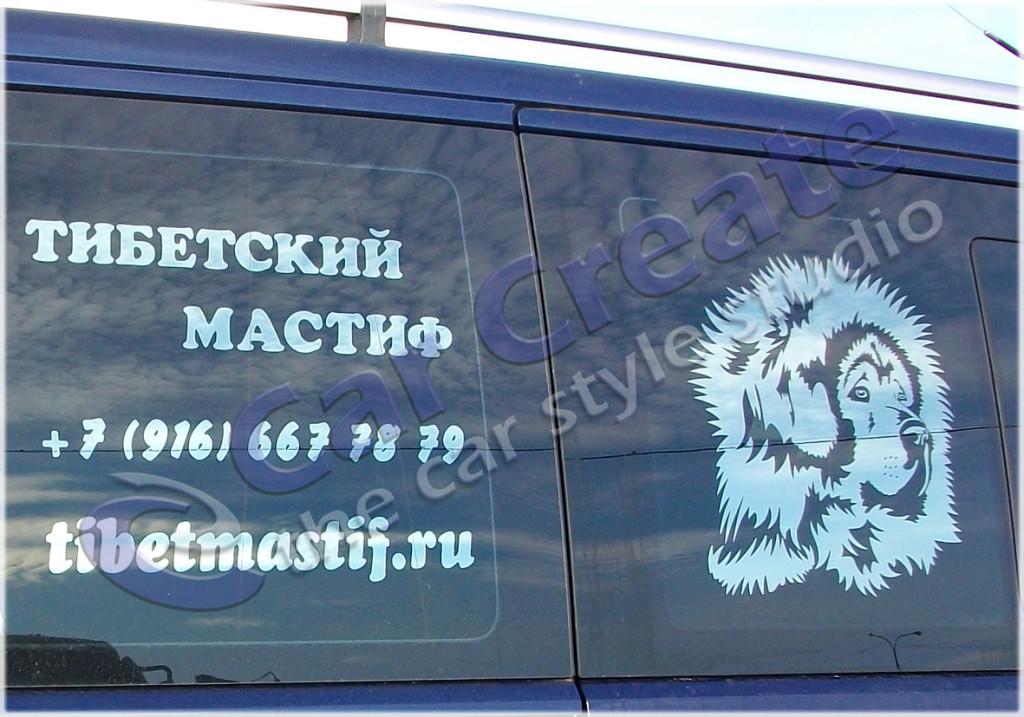 """Арт-тонирование """"Тибетский мастиф"""""""